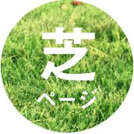 shiba_btn