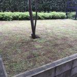 芝の張替え(既存の芝を剥がして野芝へ)/世田谷区 マンション専用庭