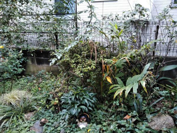 清瀬市 お庭のお手入れ 寄せ植え