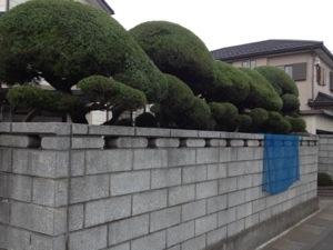 庭師埼玉日本東京植木屋ニワナショナル