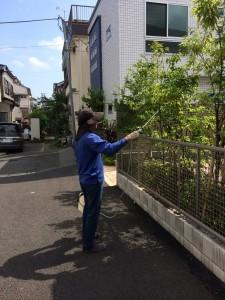 害虫の消毒を依頼できる業者やお店おすすめ埼玉県ニワナショナル