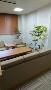 植物設置業者埼玉東京おすすめ観葉植物