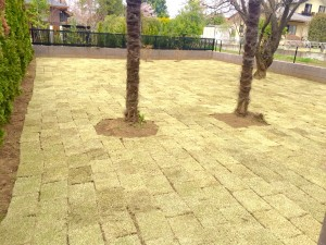 天然芝を依頼できる庭の専門店ニワナショナルです