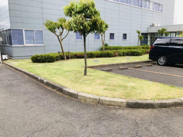 三芳町草刈り