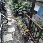 新宿区花植え