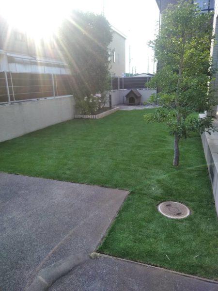 人工芝に張替え