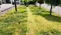 芝刈り・芝敷き