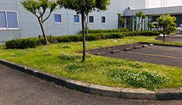 マンション・アパート・集合住宅