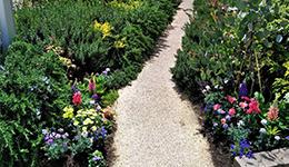 花植え・寄せ植え・ガーデニング