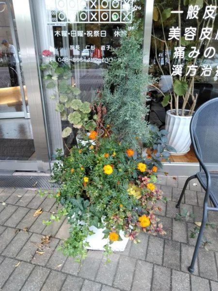 9.24プランター花植え年間管理さいたま市