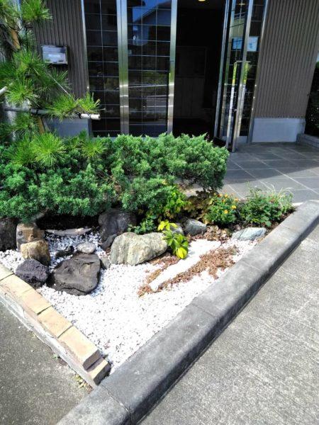 蓮田市介護施設花植え