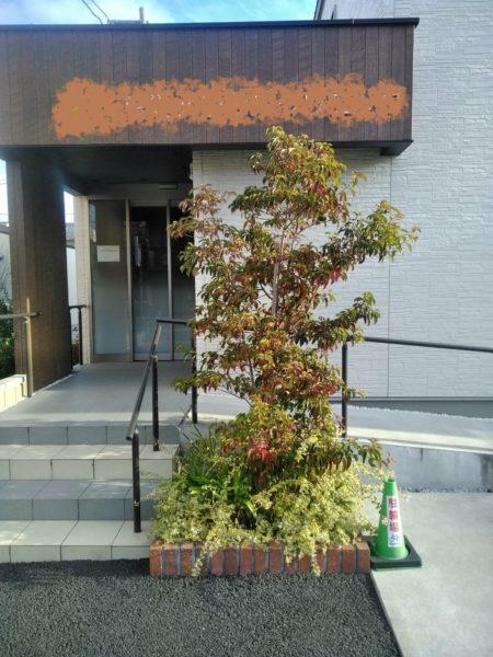 12.11 剪定 鴻巣市 植栽お手入れ 新規植樹