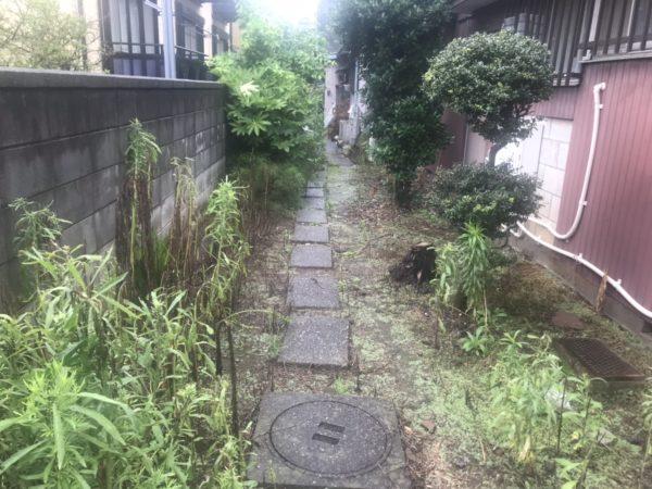 7.9 さいたま市 中央区 みかん、モチ、ヤツデ伐採 切りおき処分、草刈り