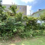 庭木の伐採、剪定、笹刈り/朝霞市
