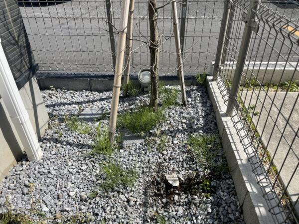 【庭木の整理・剪定・お庭のプチリフォーム・雑草対策】枯木・庭木の抜根、伐採、庭木の剪定、固まる土の雑草対策、レンガの仕切り作り