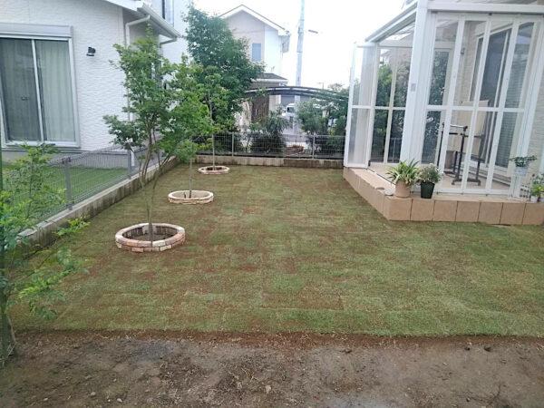 メンテナンスが楽な省管理型の芝生「TM9」の芝張り/埼玉県富士見市