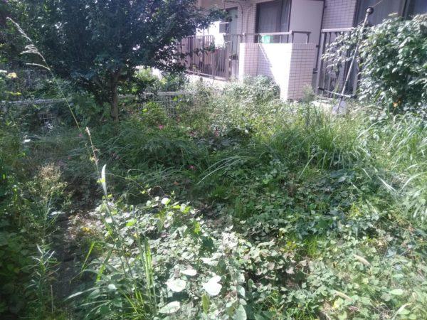 10.6 調布市 草刈り+防草シート(人工芝)