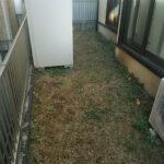 天然芝から人工芝への張り替え/川口市