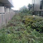 マンションの植栽管理・砕石入れ/さいたま市