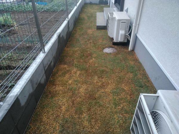 芝はがしとTM9芝張り/さいたま市