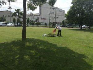 植栽管理芝管理庭管理のプロニワナショナル