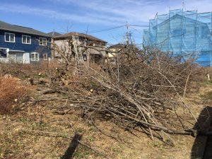 伐採した木の枝も処分します埼玉県上尾市