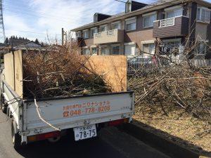 木の枝処分業者は埼玉県内全域対応!