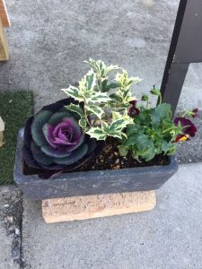 花植木鉢寄せ植え植え込み依頼は庭の専門店ニワナショナル!