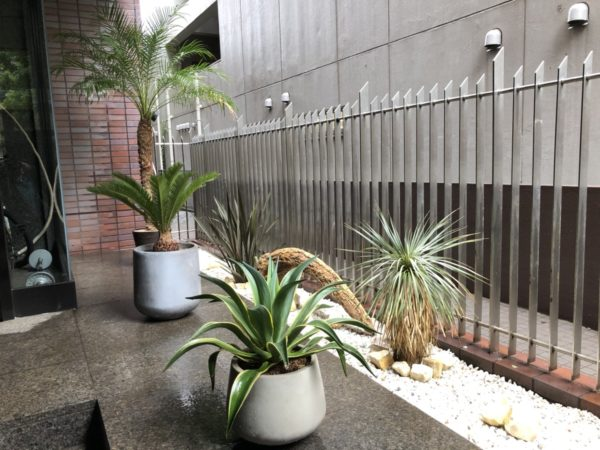 植栽スペースを西海岸風にイメージチェンジ/千代田区