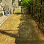 芝生の張り替え作業(姫高麗芝からTM9に)/東京都荒川区