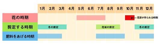 %e3%81%82%e3%81%97%e3%82%99%e3%81%95%e3%81%84