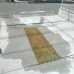 芝生の張り替え、TM9へ、土壌改良/埼玉県春日部市