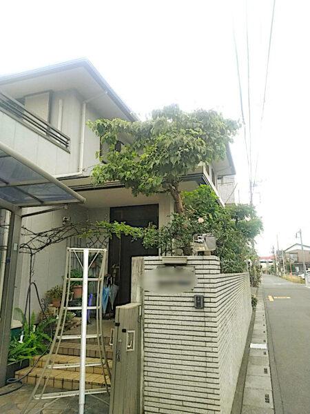 ハナミズキとモミジ、キョウチクトウの剪定と消毒/埼玉県上尾市