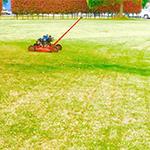 芝生の管理・張り メニュー ボタン